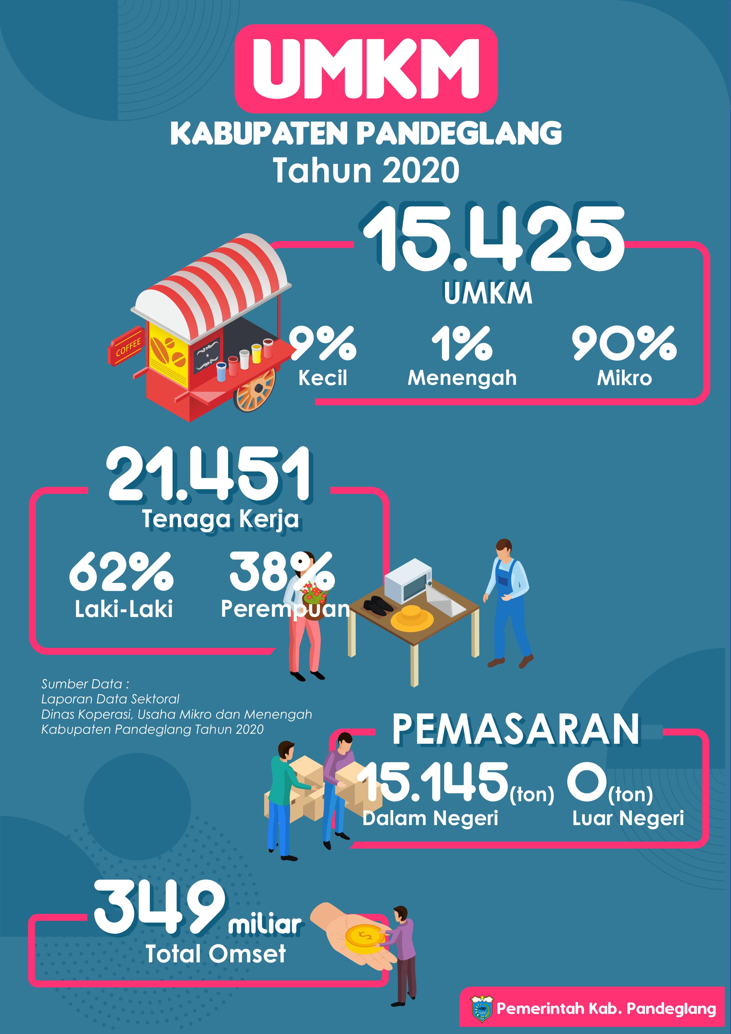 UMKM Kabupaten Pandeglang Tahun 2020